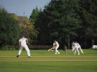 People playing cricket on a green field
